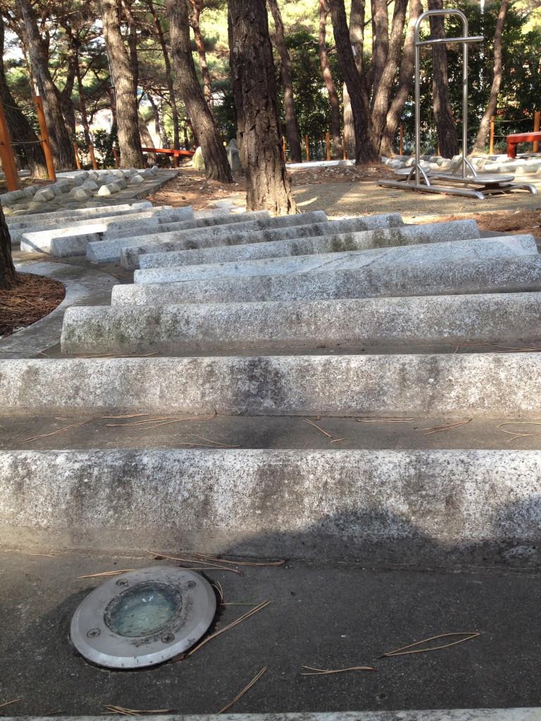 Barefoot Park 5